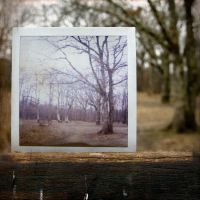 Wooden frame by TotoRino