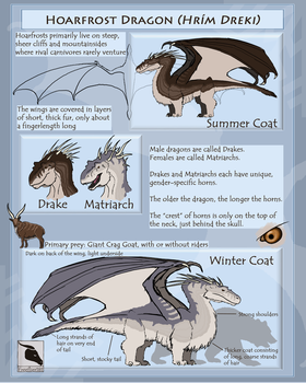 Hoarfrost Dragon (Hrim Dreki) Reference Sheet by Freeflier181