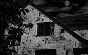 Old House by ortlibas