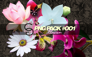 PNG PACK #OO1 - CG by MPepina