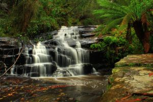 Waterfall Cora Lynne Stock by blaisedrew62