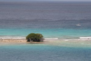 Island in the Sea by SanibelRoo
