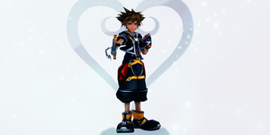 Fighting for the Light - Sora by SnowEmbrace