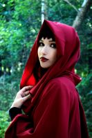 RED RIDING HOOD or BAD WOLF? by Mika-Kallahan