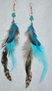 brown and blue feathers 1 by JozzyKane