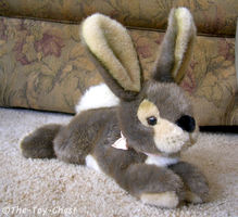 Aurora Rabbit Plush by The-Toy-Chest