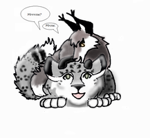Snowleopard and Fox by neonchrysocyon