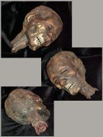 Egyptian Mummy Head 16 by Pirkleations