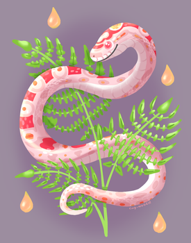 Another corn snake by Epicratis