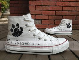 Ed Sheeran hand painted canvas shoes by elleflynn