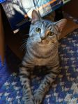 Check out my box! by chuckitty