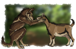 Tundra and a Goat by Canis-ferox