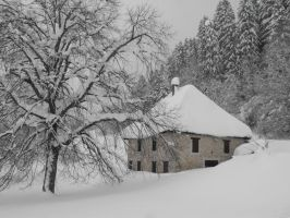 Snowy house and Forest of Grande Chartreuse 2 by A1Z2E3R