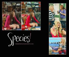species by Heisbieber