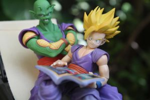Mr. Piccolo and Me by here-and-faraway