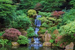 Japanese Waterfall by Moohoodles