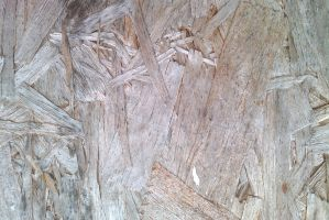 Chipboard texture 2 by TomRolfe