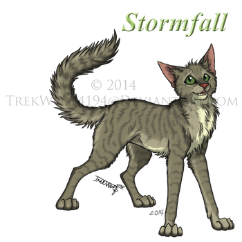 Stormfall by Wolf-Trek