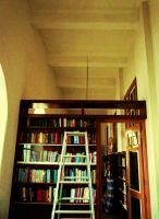Ladders to Intelectuality by titis-pratiwi