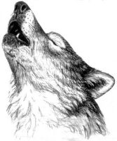 Howling Wolf head by The-Restless-Dead