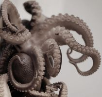 Octopus by roxy111
