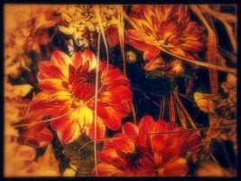 Bundle of Flowers v.6 by Scorpion31
