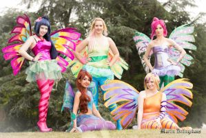 Winx Club by Sockilein