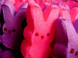 Pink and Purple Bunny Peeps by Tanya-Dawn-Art