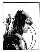 Arrow - 2 by DMThompson