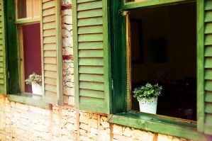 green window blind by evvelzamanicinde