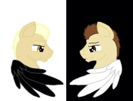 The Two Sides by TheFemaleDoctor1073