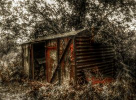 Old railway wagon by runwhat