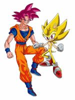 Super Saiyan God Goku and Super Sonic by delvallejoel