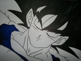 Goku by supervegita