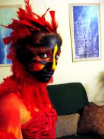 face paint of the phoenix by listless-insanity