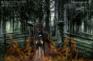 Warned off by the Hellhound by WaterSinger