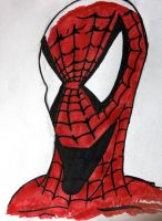 The Amazing Spider-Man by Philanthropic-Racoon