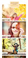 Autumn Tone - 4 Adobe Lightroom Presets by fernotte94