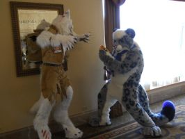 Fight! (RMFC) by TwistedTerrace