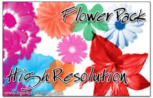 Free Photoshop Flower Brushes by truemitra