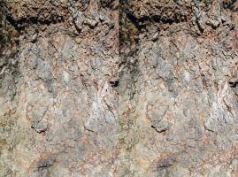 Large London Plane Bark Texture Cross Eye Stereo by aegiandyad