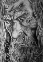 Gandalf the Grey by Joel-Wade