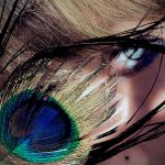 peacock by sivel12001