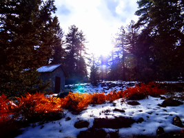 Troodos Day Trip -1- by IoannisCleary