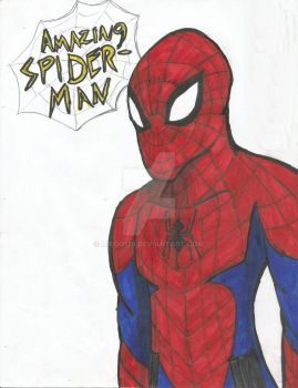 Amazing Spiderman by miedo128