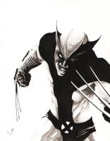 X-Force Wolverine tonal by SpaciousInterior