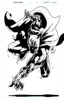 Hero of the Day: Black Panther by jonathan-rector