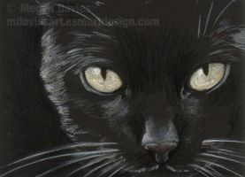 Glow - Black Cat ACEO by Pannya