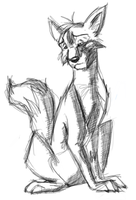 Fox Sketch by SikiSpots