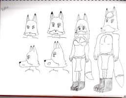 D and D Race Concept Foxkin by starfoxluver